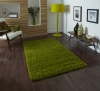 Vista 2236 Green Shaggy Machine Made Rug - 100% Polypropylene
